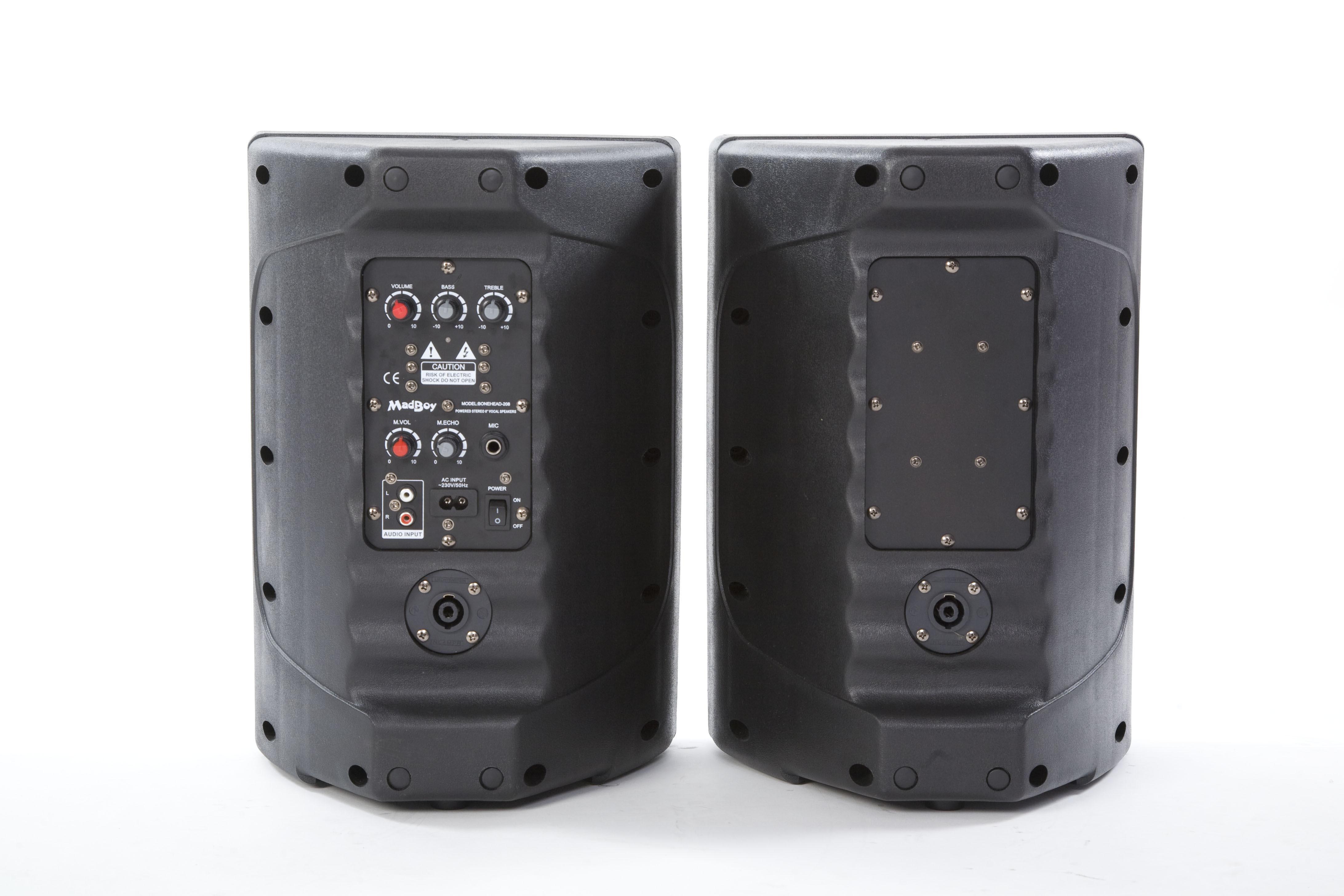 Активная акустическая система Madboy BONEHEAD 208