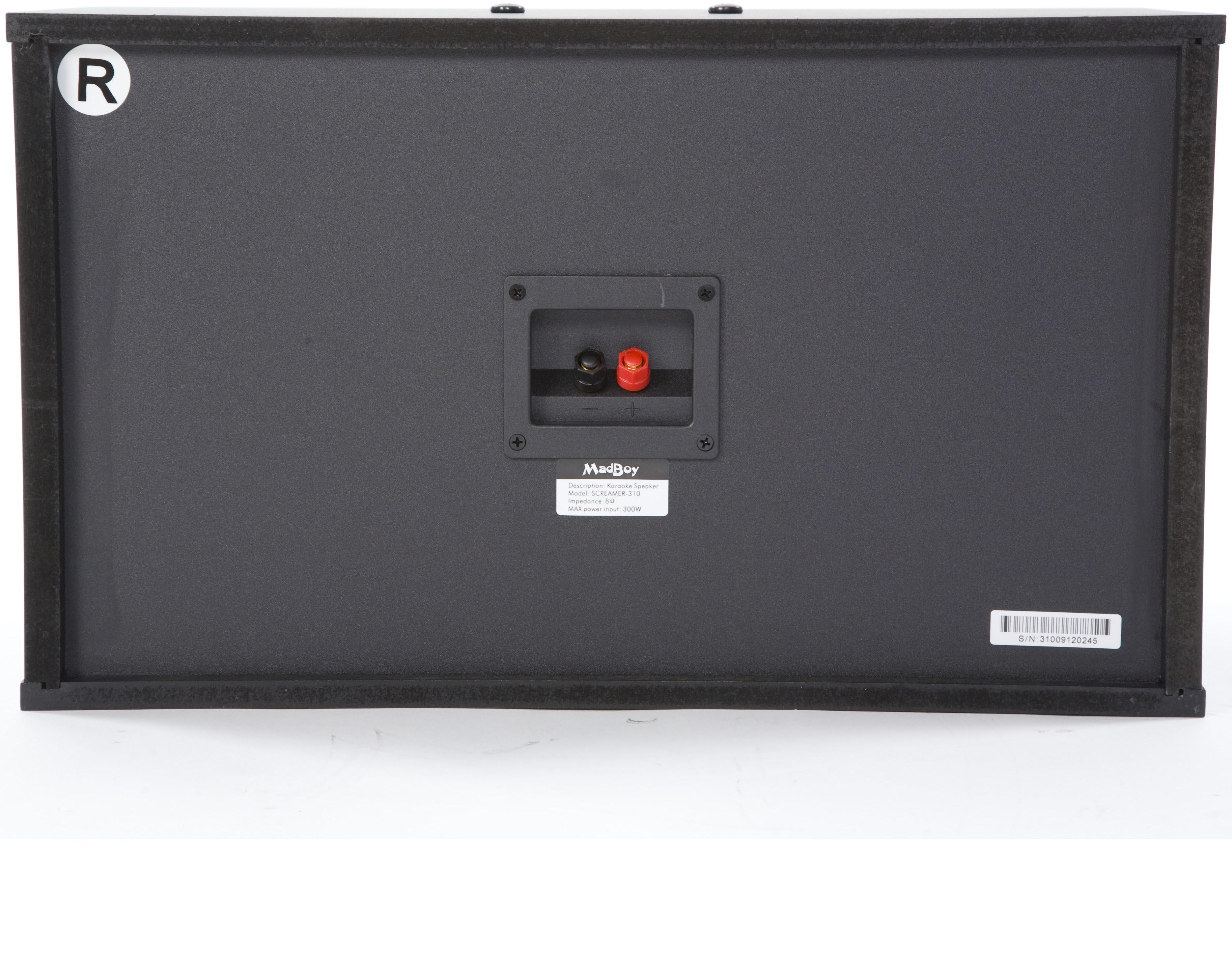 Пассивная акустическая система Madboy SCREAMER-310