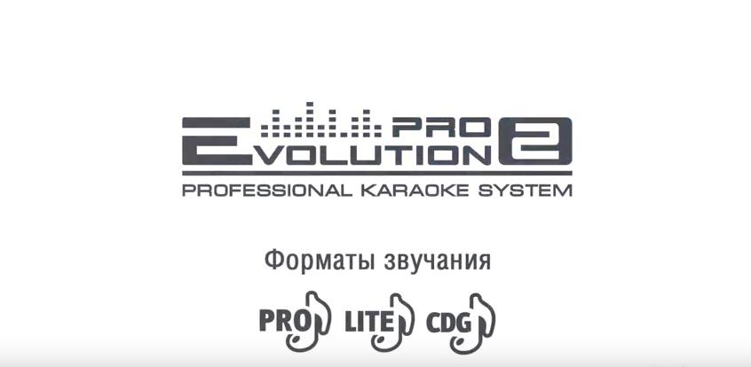 Обзор караоке Evolution Pro 2
