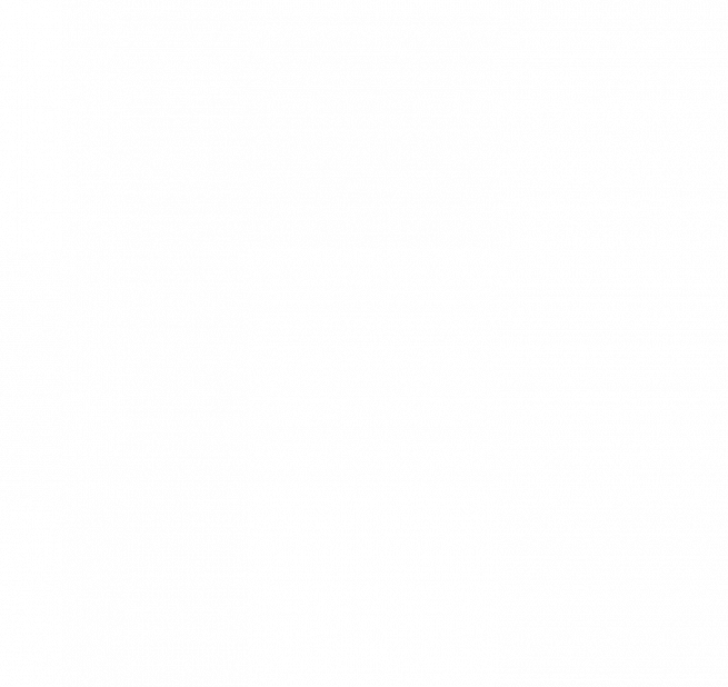 Madboy MFP-1500 универсальный DVD плеер караоке