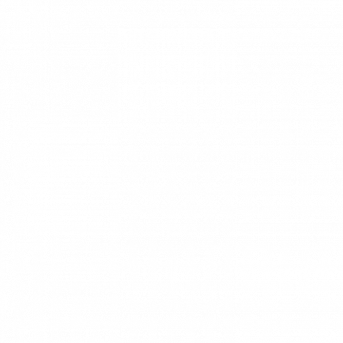 EVOCASE (silver) — кейс для караоке-системы EVOBOX+Микрофон EVOLUTION SE-200 D