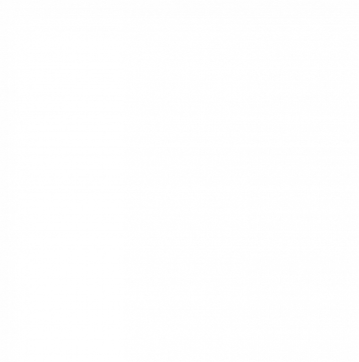 Комплект FLAMINGO оборудование для онлайн караоке + 2  проводных микрофона